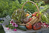 Basket of freshly harvested vegetables