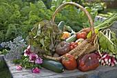 Korb mit frisch geerntetem Gemüse