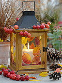 Lantern decorated with colorful autumn leaves and ornamental apples (Malus)
