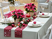 Christmas table decoration with Euphorbia pulcherrima