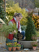 Planting an autumnal bowl with pampas grass and a box