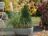 Plant an autumnal bowl with pampas grass and a book