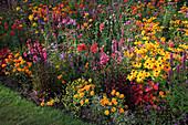 Buntes Sommerblumenbeet in Garten