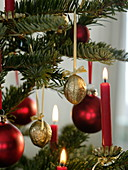 Golden nuts (Juglans), red balls and candles as a tree decoration