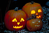 Halloween: Pumpkin LANTERNS