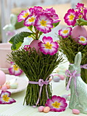 Easter table decoration with pink primroses and blueberry branches