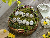 Easter basket with inscribed quail eggs, inscription 'Frohe Ostern'