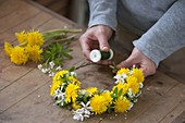 Dandelions wpring wreath, with woodruff and rock pear