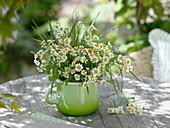 Chamomile (Matricaria chamomilla) with grasses in green milkpot