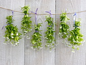 Woodruff drying for fragrance bags