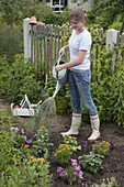 Young woman planting summer flower turnip
