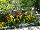 Colorful summer bed with lilies