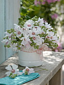 Bouquet made of Lavatera thuringiaca 'Barnsley' (shrub mallow)