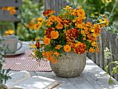 Orange-red bouquet of Tagetes patula and tenuifolia
