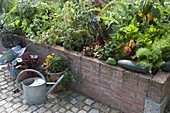 Cottage garden with vegetables and summer flowers in the raised bed