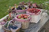 Raspberries, blackberries, strawberries and currants