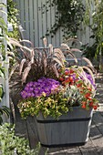 Plant wooden tubs in the autumn with grass and asters