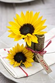 Table decoration with sunflowers and sacaline