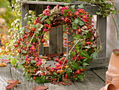 Wreath of Hedera, fruits of Euonymus, Rosa