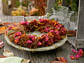 Autumn wreath of leaves of the rock pear