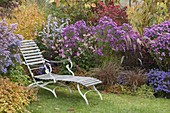 Lie on the autumnal bed with asters and grasses