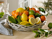 Basket of tangerines, lemons, limes