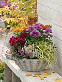 Autumn basket with Chrysanthemum, Calluna