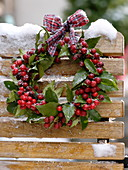 Wreath of Ilex (holly) with checkered ribbon