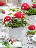 New Year's Eve decoration with toadstools