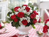 Red-white scent dew