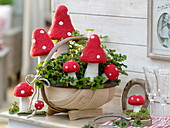 Oxalis deppei in a woodchip basket, decorated with fly agaric