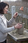 Cut branches of flowering shrubs to make cuttings