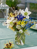 Kleiner Strauß aus Helleborus niger (Christrose), Iris reticulata