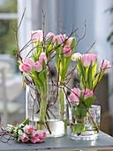 Sträuße aus Tulipa 'Dynasty' (Tulpen) mit Zweigen von Cornus (Hartriegel)