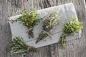 Herbal bouquet of thyme