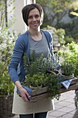 Woman carries wooden basket with herbs of Provence in pots