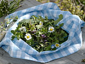 Freshly picked wild herb salad