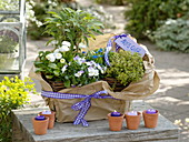 Basket with herbs and edible flowers as a gift