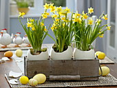 Easter decoration with ostrich eggs