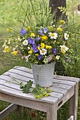 Colorful early summer bouquet, Leucanthemum vulgare