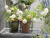 Small Rose 'Ghislaine De Feligonde' bouquets
