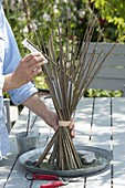 Bunch of stems with willow branches, mallows and lady's mantle