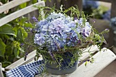 Hydrangea in wreath with Vicia cracca tendrils
