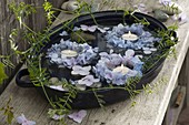 Small wreaths made of hydrangea (hydrangea) and swimming flowers