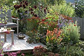 Red bed on the wooden deck with dahlias and perennials