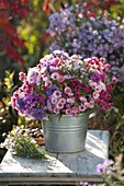 Bouquet made of mixed aster (white wood aster) in zinc buckets