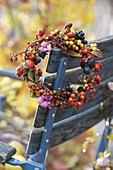 Berry wreath of Rose, cotoneaster, sea buckthorn