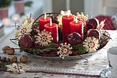 Natural Advent wreath of Cornus and Juniperus branches