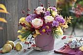 Autumn rose 'Double Delight' rose, chrysanthemum