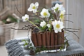 Christmas roses - cinnamon sticks - arrangement